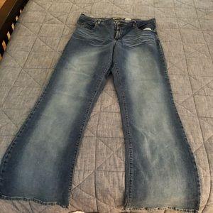 Women's Paris Blues Stretch Flare Jeans